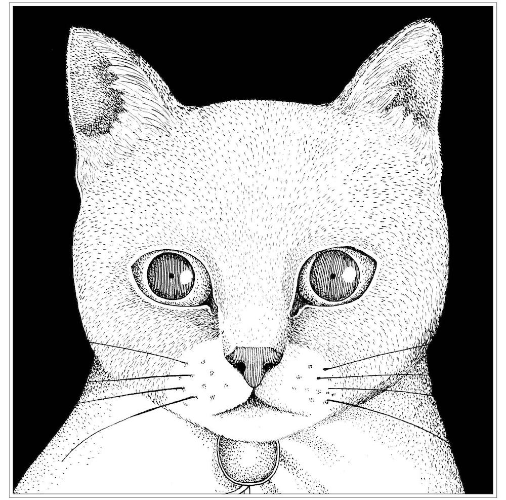 テンテンコ 超刺激的な仲間達と作ったネコソング カバーアルバム all
